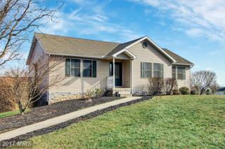 9126 Apple Jack Drive, Mercersburg, PA 17236 (#FL9863105) :: Pearson Smith Realty
