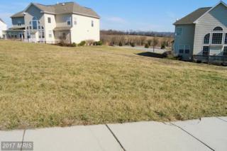 578 Evangeline Drive, Waynesboro, PA 17268 (#FL9865417) :: Pearson Smith Realty