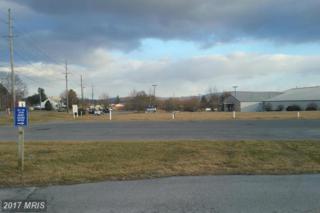 12060 Skyhawk Drive, Waynesboro, PA 17268 (#FL9866611) :: LoCoMusings