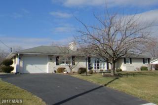 52 Williamson Avenue, Greencastle, PA 17225 (#FL9869527) :: Pearson Smith Realty