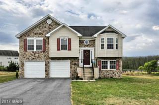 12598 Pittman Road, Mercersburg, PA 17236 (#FL9895096) :: Pearson Smith Realty