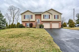 2455 Hafer Road, Fayetteville, PA 17222 (#FL9897658) :: LoCoMusings