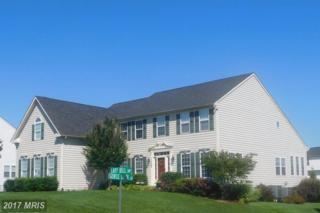 11568 Lady Dell Drive, Waynesboro, PA 17268 (#FL9898214) :: LoCoMusings