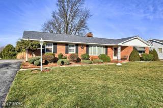 123 Crider Avenue, Fayetteville, PA 17222 (#FL9898364) :: Pearson Smith Realty