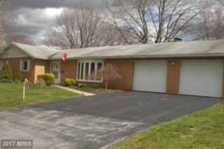 440 Larkspur Lane, Chambersburg, PA 17202 (#FL9906473) :: Pearson Smith Realty