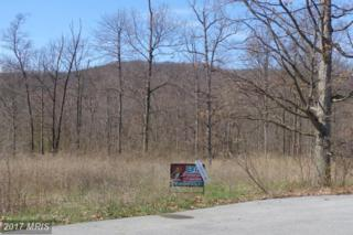 Buchanan Trail W, Mercersburg, PA 17236 (#FL9913911) :: Pearson Smith Realty