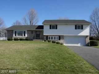 2954 Jefferson Drive, Chambersburg, PA 17201 (#FL9914317) :: Pearson Smith Realty