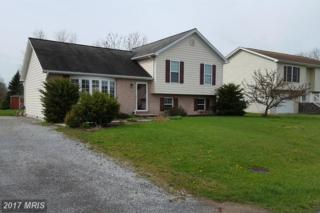 4423 Valley Circle, Fayetteville, PA 17222 (#FL9916513) :: LoCoMusings