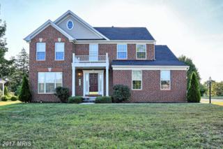 206 Black Road, Mercersburg, PA 17236 (#FL9916976) :: Pearson Smith Realty