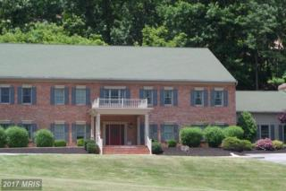 14201 Barberry Circle Road #103, Mercersburg, PA 17236 (#FL9917574) :: Pearson Smith Realty