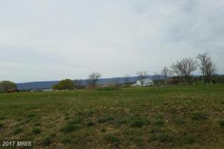 Sunflower Circle Lot 14, Chambersburg, PA 17201 (#FL9921642) :: Pearson Smith Realty