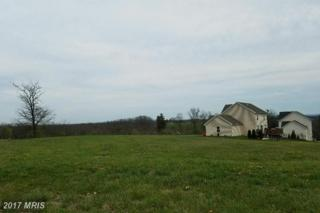 Spring Bloom Court Lot 32, Chambersburg, PA 17201 (#FL9921660) :: Pearson Smith Realty
