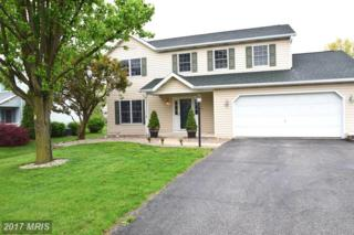 1339 4TH Avenue S, Chambersburg, PA 17201 (#FL9926192) :: Pearson Smith Realty