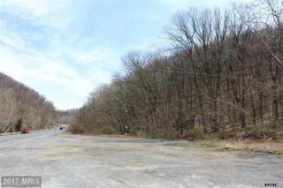 12122 Buchanan Trail E, Rouzerville, PA 17250 (#FL9927293) :: Pearson Smith Realty