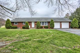 10599 Mentzer Gap Road, Waynesboro, PA 17268 (#FL9927473) :: Pearson Smith Realty