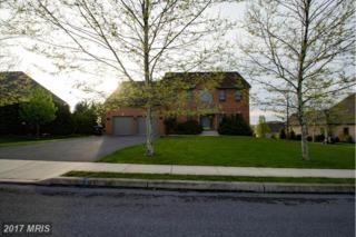 171 Celestial Terrace, Greencastle, PA 17225 (#FL9931488) :: Pearson Smith Realty