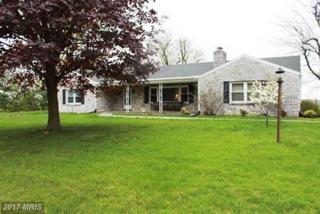 160 Loudon Road, Mercersburg, PA 17236 (#FL9932618) :: Pearson Smith Realty
