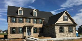 189 St. Paul Drive, Chambersburg, PA 17201 (#FL9943126) :: Pearson Smith Realty