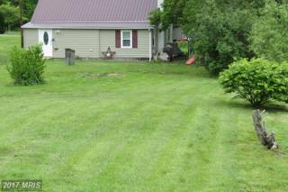 13999 Dickeys Road, Mercersburg, PA 17236 (#FL9946743) :: Pearson Smith Realty