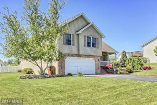 1647 Hamilton Hills Drive, Chambersburg, PA 17202 (#FL9949013) :: Pearson Smith Realty