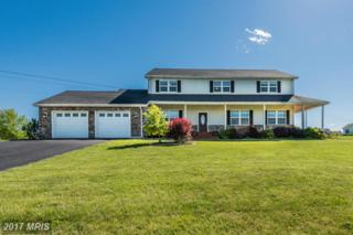 470 Eugene Drive, Chambersburg, PA 17202 (#FL9949023) :: Pearson Smith Realty