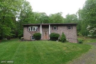 11426 Skyline Drive, Orrstown, PA 17244 (#FL9950836) :: Pearson Smith Realty