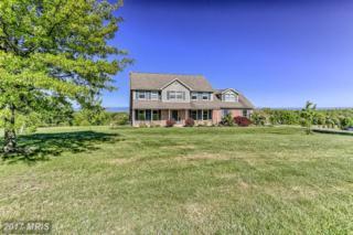 2372 Stillhouse Hollow Road, Shippensburg, PA 17257 (#FL9951048) :: Pearson Smith Realty