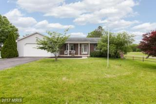 13391 Williamsport Pike, Greencastle, PA 17225 (#FL9955710) :: Pearson Smith Realty