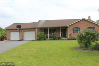10122 Cardinal Drive, Orrstown, PA 17244 (#FL9957111) :: Pearson Smith Realty