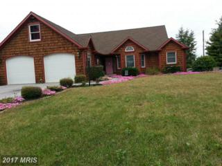 6163 Mountain View Drive, Chambersburg, PA 17202 (#FL9959352) :: Pearson Smith Realty