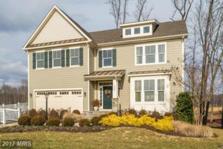 7224 Heron Place, Warrenton, VA 20187 (#FQ9836826) :: Pearson Smith Realty