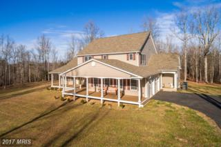 6611 Olinger Road, Marshall, VA 20115 (#FQ9838671) :: Pearson Smith Realty