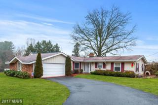 263 Norfolk Drive, Warrenton, VA 20186 (#FQ9846863) :: Pearson Smith Realty