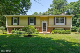 6244 Park Place, Hume, VA 22639 (#FQ9889900) :: Pearson Smith Realty
