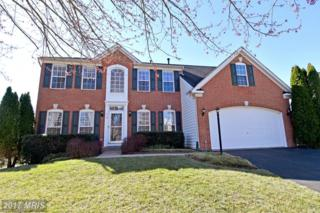 210 Cannon Way, Warrenton, VA 20186 (#FQ9898386) :: Pearson Smith Realty
