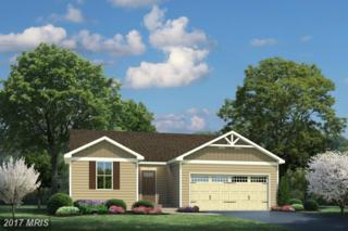 01 Godwins Landing Drive, Remington, VA 22734 (#FQ9902323) :: Pearson Smith Realty