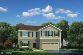05 Godwins Landing Drive, Remington, VA 22734 (#FQ9906498) :: Pearson Smith Realty
