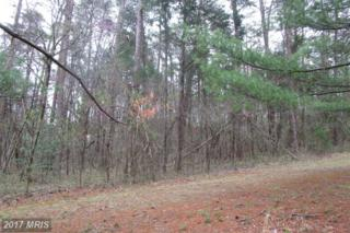 0 Shenandoah Path Road, Catlett, VA 20119 (#FQ9911499) :: Pearson Smith Realty