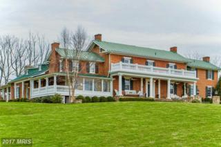 1787 Light Horse Lane, Delaplane, VA 20144 (#FQ9911538) :: Pearson Smith Realty