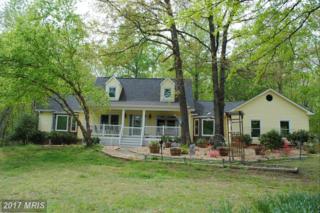 7002 Owl Lane, Marshall, VA 20115 (#FQ9925387) :: Pearson Smith Realty