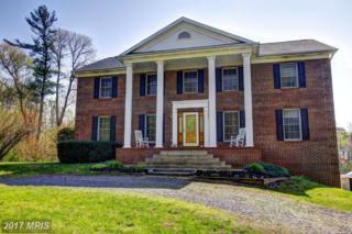 6231 Balls Mill Road, Midland, VA 22728 (#FQ9929021) :: Pearson Smith Realty