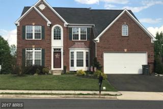 10922 Southcoate Village Drive, Bealeton, VA 22712 (#FQ9932085) :: Pearson Smith Realty