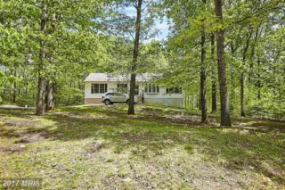 13445 Oakview Drive, Goldvein, VA 22720 (#FQ9933169) :: Pearson Smith Realty