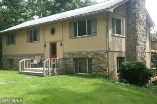 9463 Mountjoy Road, Marshall, VA 20115 (#FQ9949771) :: Pearson Smith Realty