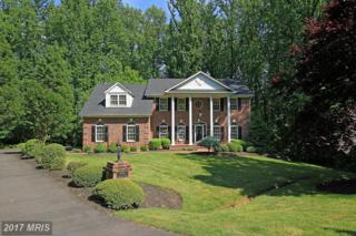 6549 Stoneridge Court, Warrenton, VA 20187 (#FQ9958170) :: Pearson Smith Realty