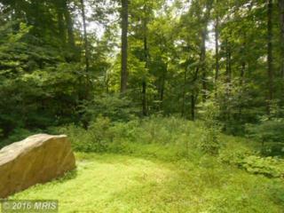 14510 Ridenour Road, Smithsburg, MD 21783 (#FR9706462) :: Pearson Smith Realty