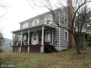 3510 Mountain Road S, Knoxville, MD 21758 (#FR9831425) :: Pearson Smith Realty