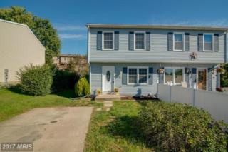 74 Wenner Drive, Brunswick, MD 21716 (#FR9832914) :: Pearson Smith Realty