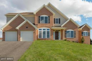 3 Gladhill Drive, Middletown, MD 21769 (#FR9839531) :: Pearson Smith Realty