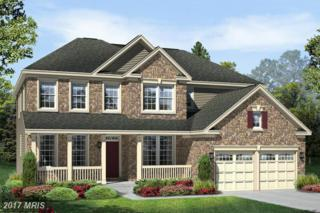 Yeager Court, New Market, MD 21774 (#FR9843247) :: Pearson Smith Realty